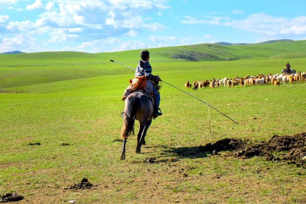 モンゴル遊牧民の伝統的な食文化及びご馳走